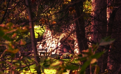 grotto-through-trees